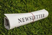 Newsletter - Wedow Immobilien