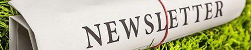 VIP Newsletter bei Wedow Immobilien